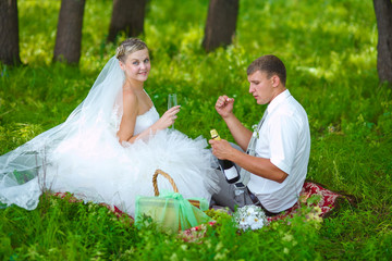 couple at wedding newlyweds bride and groom a picnic in a forest