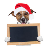 christmas banner placeholder dog poster