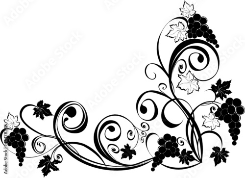 Grapevine. Vector wine design elements.