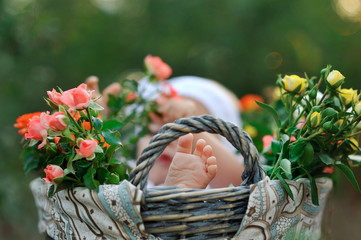 in a basket with a bouquet of roses is a child and a close up fo