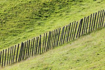 Weide mit Zaun, Bergalm