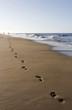 Leinwanddruck Bild - Die Spur am Strand