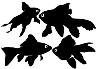 Goldfish vector silhouettes on white background