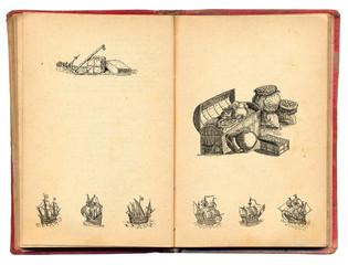Pirate book illustration