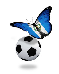 Concept - butterfly with Guatemala flag flying near the ball, li