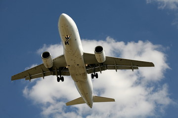 Flugzeugbauch