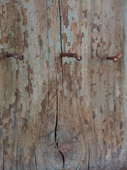 Wooden wall with rusty nails