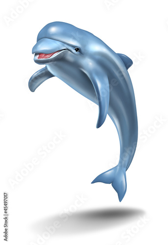 Foto op Canvas Dolfijnen Dolphin Jump
