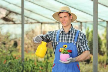 Male gardener watering a plant in a garden