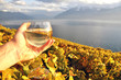 Wineglass in the hand against vineyards in Lavaux region, Switze