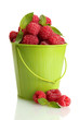 ripe raspberries with mint in bucket, isolated on white