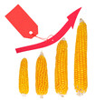 Increase in the price of corn