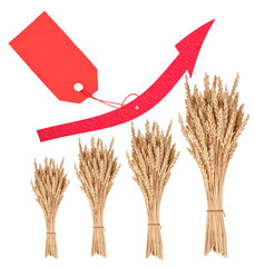 Increase in the price of wheat