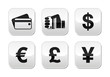 Payment methods buttons set - credit card, by cash - currency