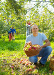 family with   apples in garden
