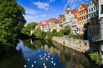 Tübingen, typische Stadtansicht mit Neckar mit Schwänen