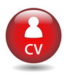 """""""CV"""" Web Button (vacancies careers jobs offers search apply now)"""