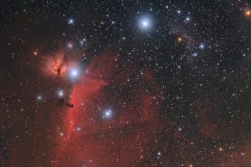 Nebulose nel cielo di Orione