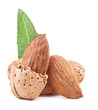 Almond nuts with leaves. Isolated on a white