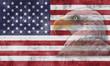 Bandera americana con el águla calva en transparencia