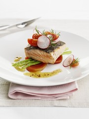 Salmon fillet with vegetable salad