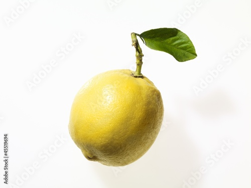A lemon with a leaf and a stalk