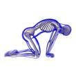 canvas print picture - Transparenter Körper, Skelett, posierend
