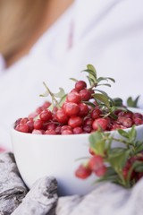 A bowl of fresh lingonberries