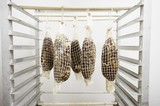 Coppa Pork Hanging in a Curing Room