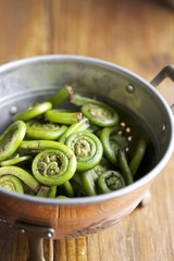 Colander of Fiddleheads on a Wooden Table