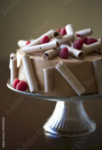 Chocolate Cake with Meringue Flutes and Raspberries