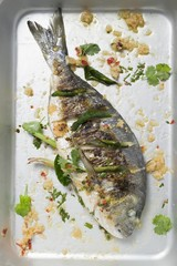 Roasted gilthead bream with lemon grass & coriander leaves