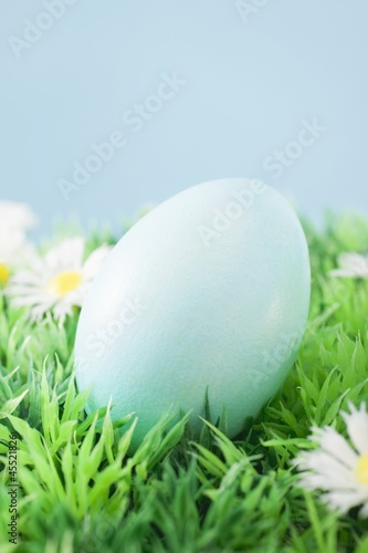 Blue Easter egg in grass with daisies