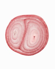 Fresh Shallot Slice; White Background