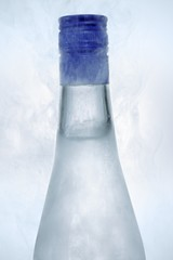 Ouzo in icy bottle (detail)