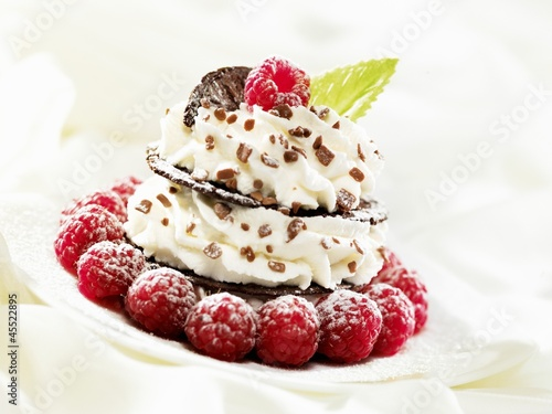 Chocolate wafer and cream fancy garnished with raspberries