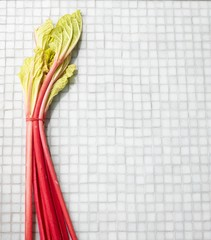 Rhubarb on a tiled surface