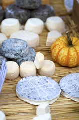 Various cheeses on straw mat