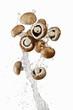 Brown mushrooms and a splash of water
