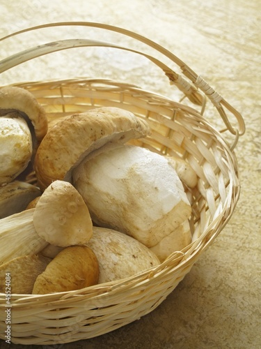 Fresh ceps in a basket