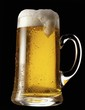 German lager in a glass beer mug against black background
