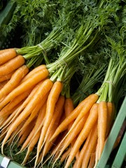 Bunches of Carrots at The Carouge Market is in Geneva Switzerland