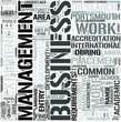 Business and Management Word Cloud Concept