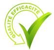 qualité efficacité sur symbole validé vert 3d
