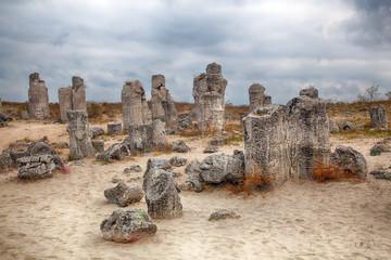 Stone Forest near Varna, Bulgaria. Pobity kamni