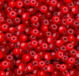 Seamless pattern with red rowanberries. Vector illustration.
