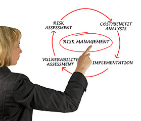 Diagram of risk management