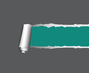 Background vector with copyspace for design, torn paper