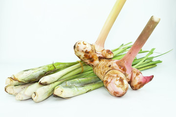 galangal and Lemon Grass on white background