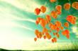 globos en el cielo